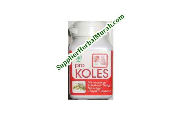 Pro Koles (Menurunkan Kolesterol Tinggi dan Mencegah Penyakit Jantung)