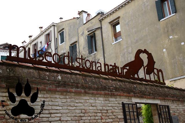 entree-musee-histoire-naturelle-venise