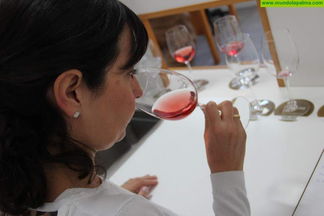 Canarias destina más de 2 millones de euros a la producción y comercialización de vinos con DOP