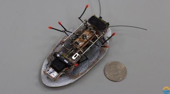 Robot Kecoak Ini Mungkin Akan Segera Masuk Kekamar Anda