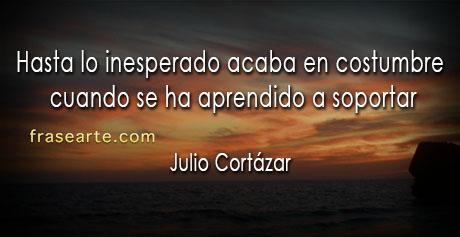 La Fuerza de la costumbre- Julio Cortázar