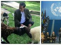 Mahkamah Internasional Proses Laporan Tertuduh Makar? Dunia Bakal Kecam Rezim Jokowi