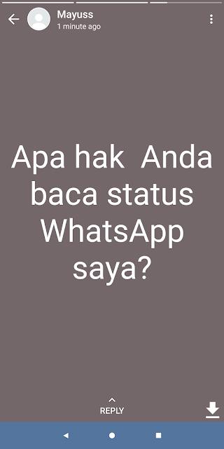 Cara Melihat Status WhatsApp Orang Lain Tanpa Ketahuan Pemilik Nomor Pembuat Status Terbaru