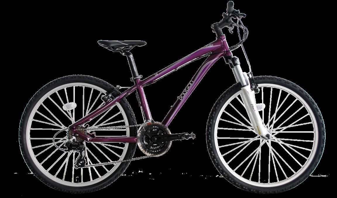 Spesifikasi dan Harga Sepeda Gunung Wanita Polygon Cleo