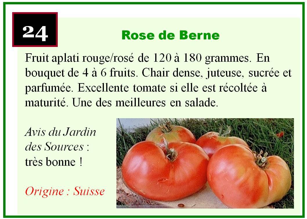 le jardin des sources les tomates. Black Bedroom Furniture Sets. Home Design Ideas
