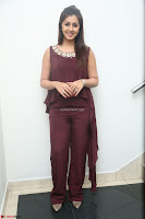 Nikki Galrani in a Brown Shining Sleeveless Gown at Nakshatram music launch ~  Exclusive 076.JPG