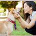 Sorria mais para o seu cão: cada sorriso de felicidade é uma festa canina de atividade cerebral
