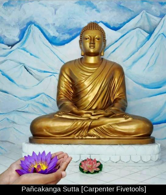 Đạo Phật Nguyên Thủy - Chuyện Kể Đạo Phật - Buông xả gánh nặng