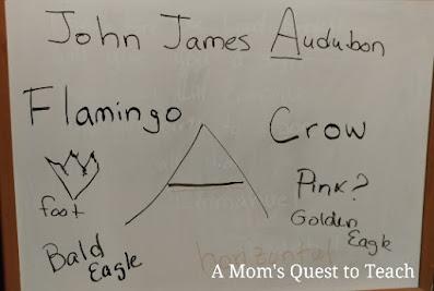 John James Audubon, Flamingo, Bald Eagle written on a white board