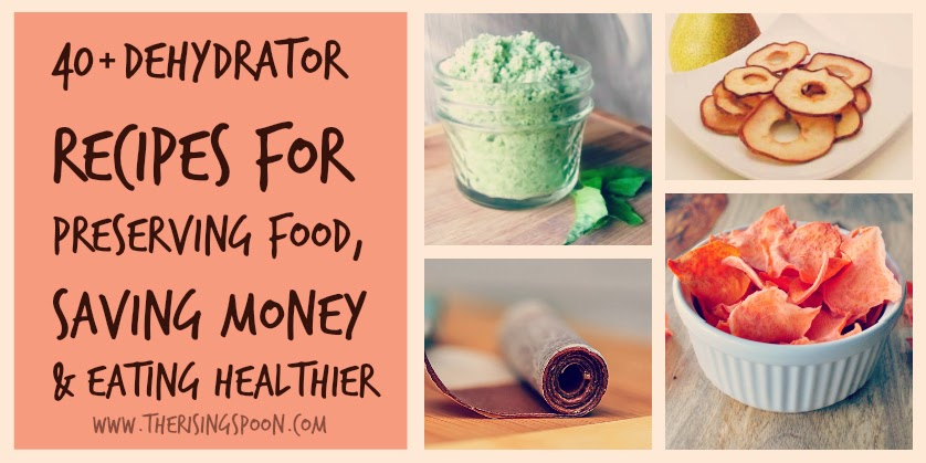 40+ Dehydrator Recipes For Preserving Food, Saving Money & Eating Healthier | www.therisingspoon.com