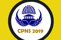 Pendaftaran CPNS 2019 Resmi Dibuka Bulan Maret, Simak Formasi dari Kemenpan RB