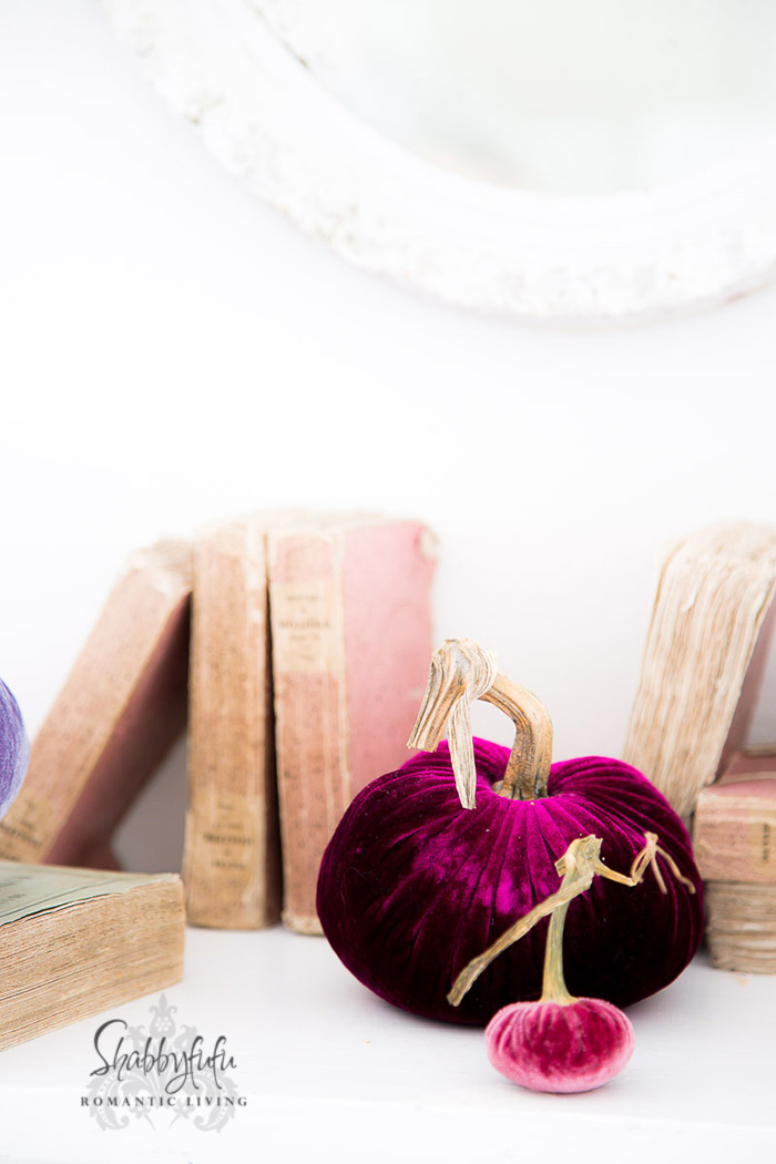 silk velvet pumpkins and old books
