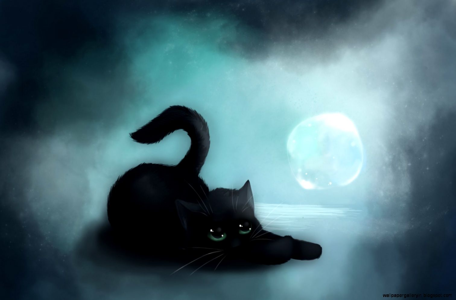 cat black hd wallpaper