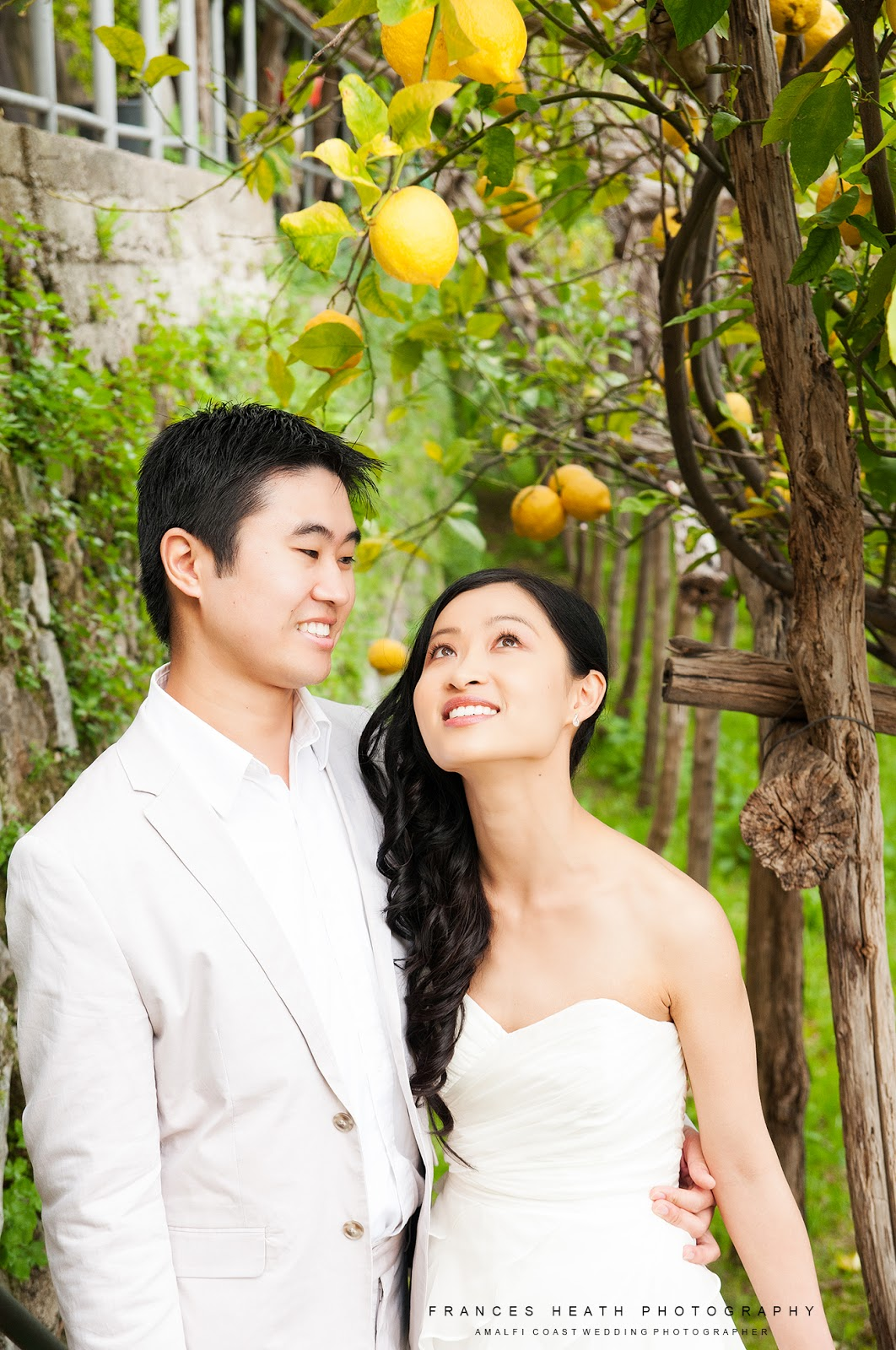 Wedding portrait in a lemon grove