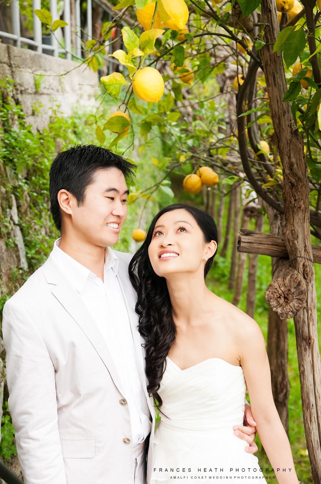 Wedding portrait in a lemon grove
