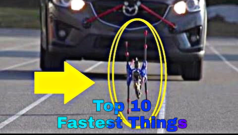 Top 10 Amazing Facts In Hindi | 10 Fastest Things Known To Man Ever