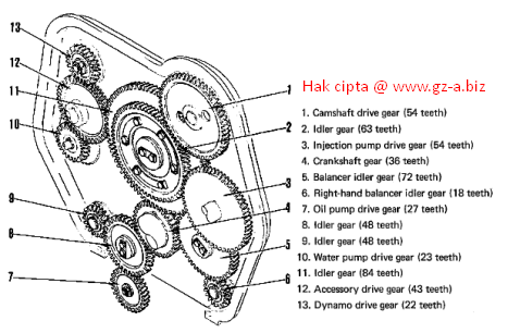 Struktur dan Fungsi Timing Gear