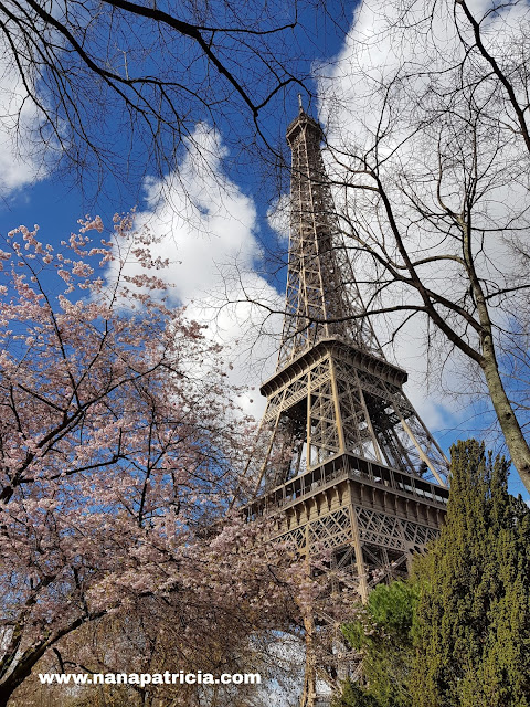 Paris Sakura