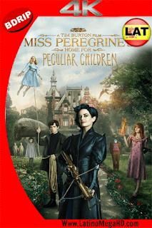 Miss Peregrine y Los Niños Peculiares (2016) Latino Ultra HD 4K 2160P - 2016
