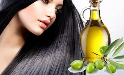Harga, Merk Kegunaan/Khasiat Minyak Zaitun Untuk Rambut Kering Dan Bercabang Mudah Rontok