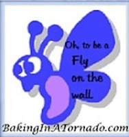 Fly on the Wall: A monthly blogger writing challenge | www.BakingInATornado.com | #MyGraphics