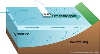 trade winds relationship to ocean currents diagram