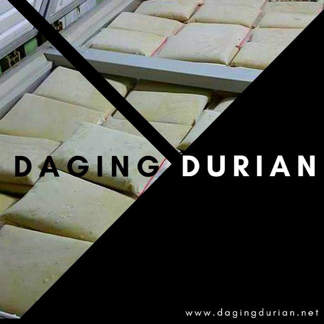 pabrik-daging-durian-medan-di-kebumen