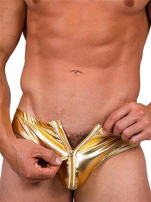 Pistol Pete Metallica Zip Front Brief Underwear Gold Detail Gayrado Online Shop