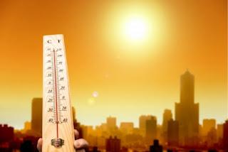 Аномально жаркая погода: МЧС даёт рекомендации