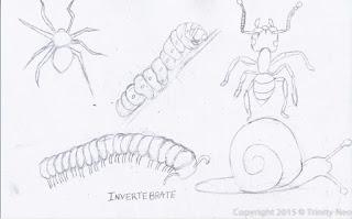A Little Dose of Me: Vertebrates and Invertebrates around