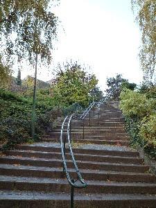 Visites guidées des parcs, jardins, espaces verts à Paris et Versailles