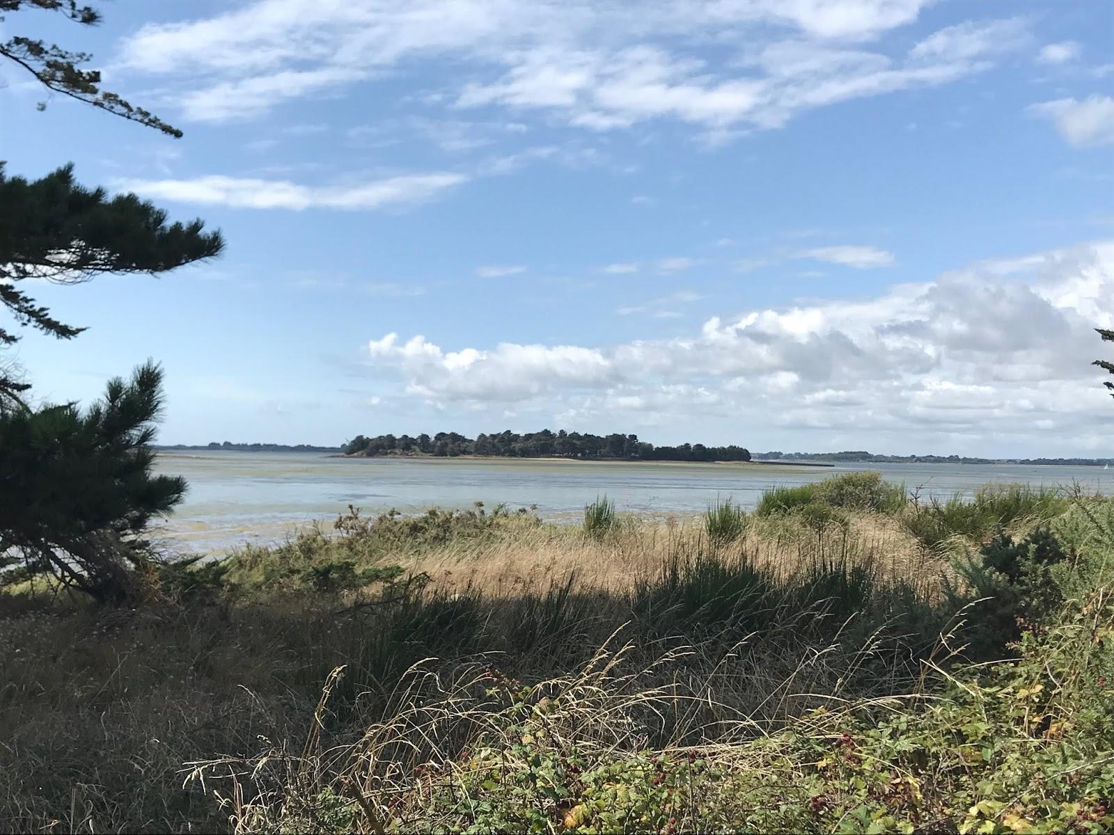 L'île Tascon