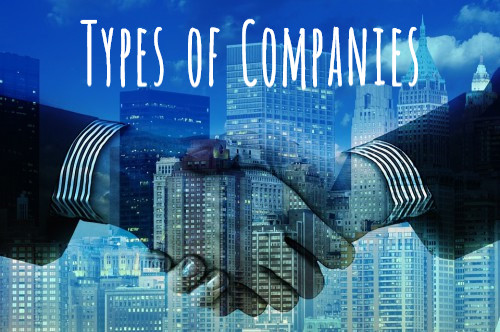 Types of company | What is a Private Company | What is a Public Company | What is a One Person Company | What is a Small company