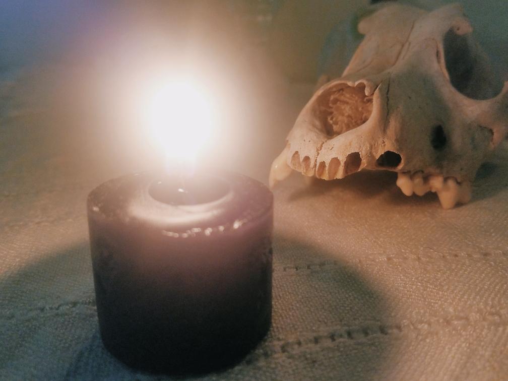 Bone Magic Series: Bones and Skulls: How to Use Them in Magic