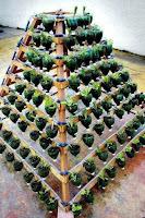 huerta casera piramide con botellas