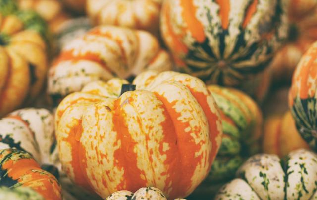 Znicze, dynie, listopad