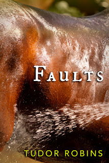 https://www.goodreads.com/book/show/31349489-faults?ac=1&from_search=true