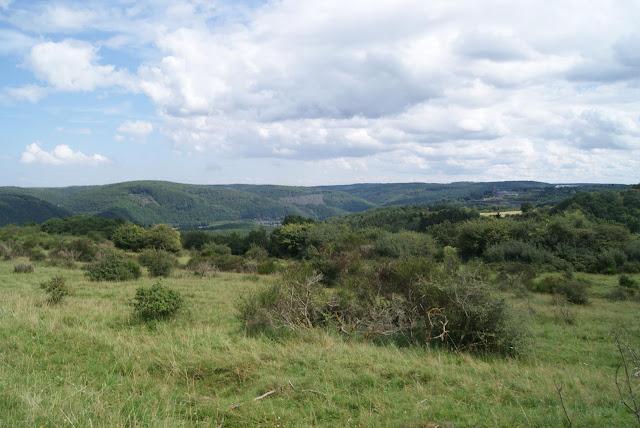 Ein Blick in die Eifel auf verschiedene Höhenzüge und Wälder