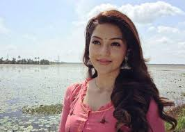 Mehreen Pirzada's Upcoming Movie With Gopichand