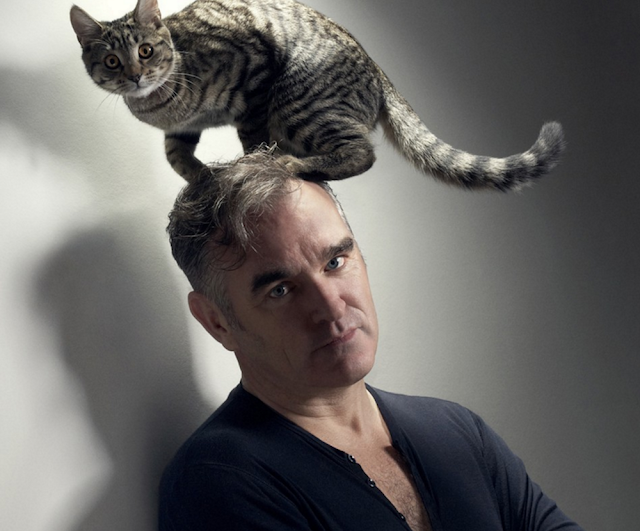 O ativismo pela causa animal nos shows de Morrissey