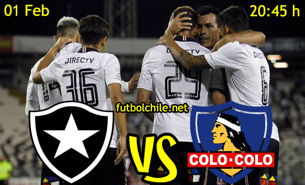 Ver stream hd youtube facebook movil android ios iphone table ipad windows mac linux resultado en vivo, online: Botafogo vs Colo Colo
