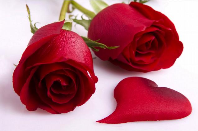 Happy Valentine's Day 2017 Image