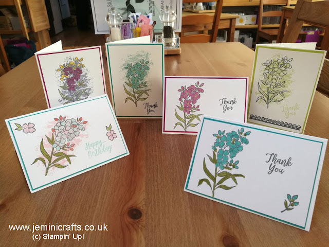 Coffee and card samples with Jemini Crafts