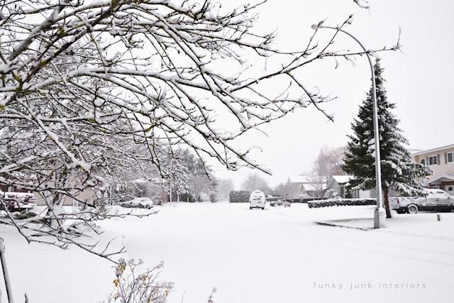 My snowy road