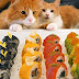 Japanese Chef Makes American Sushi While His Cats Supervise
