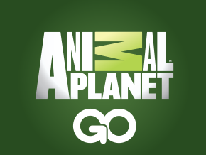 Watch Animal Planet Go on Roku