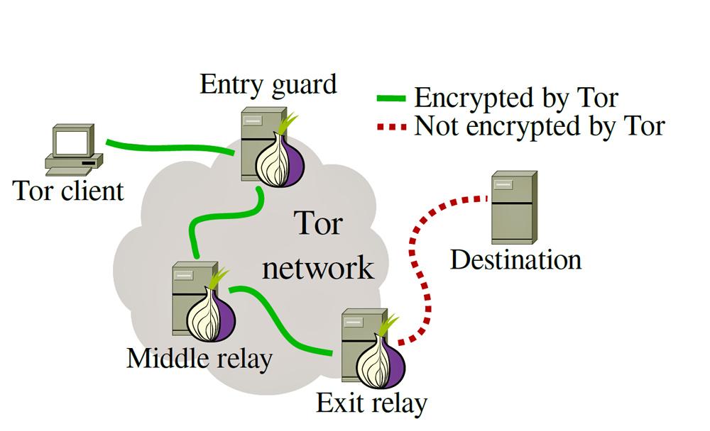 Browser tor network free tor browser free download for gidra