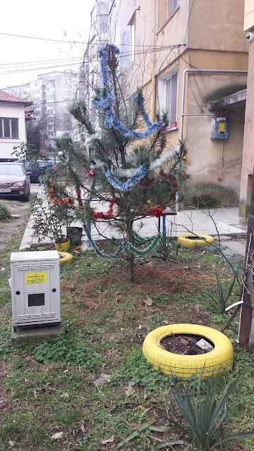 Local Community, Christmas Tree, Yambol,