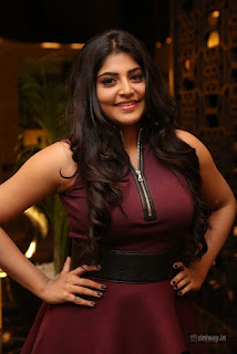 Manjima-Mohan-Stills-at-Sahasam-Swasaga-Sagipo-Audio-Launch