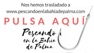 www.pescandoenlabahiadepalma.com